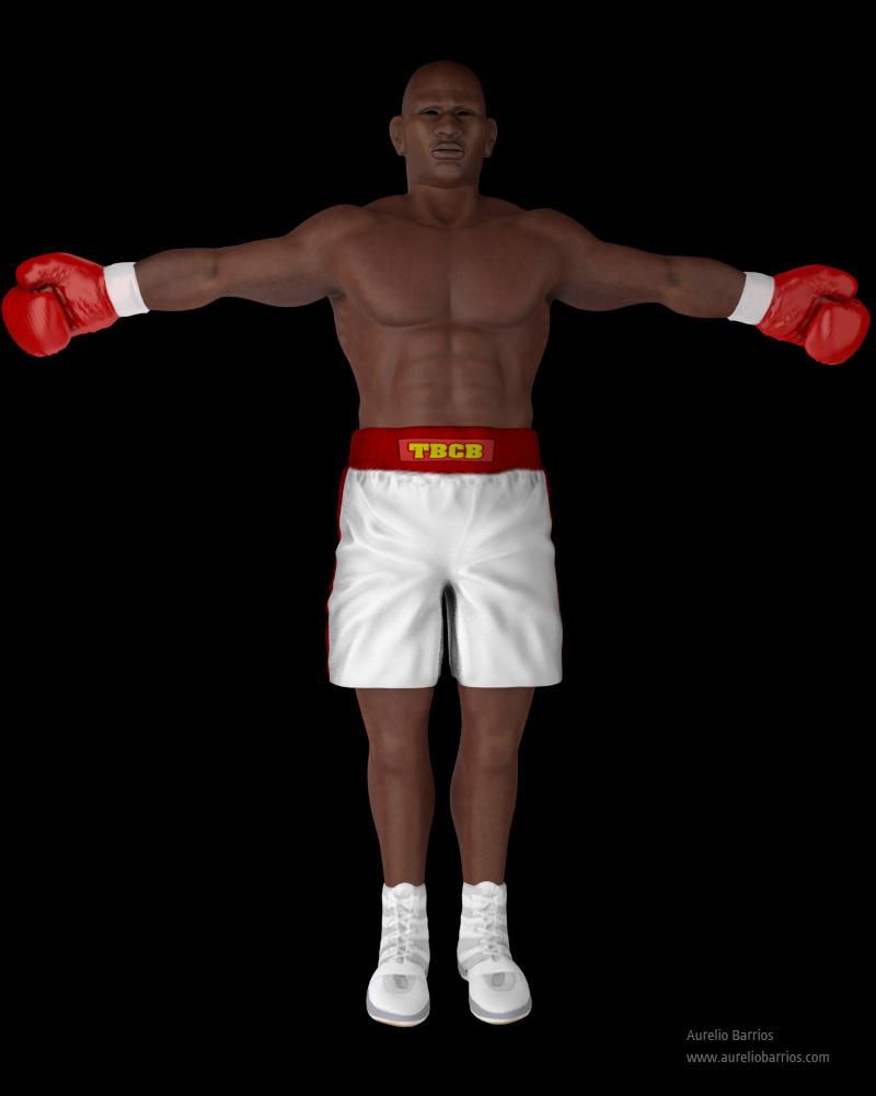 Boxer Rendering